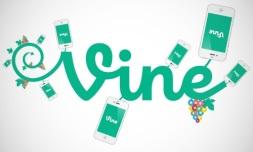 vine-graph